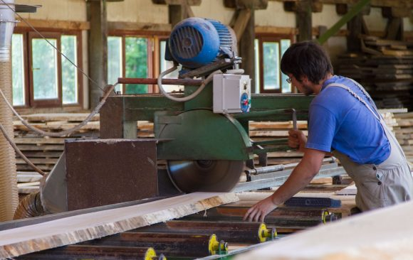 Analysis of the wood processing industry in BiH