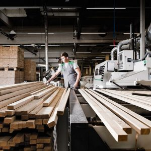 Impact of COVID 19 on Wood Processing Industry in BiH
