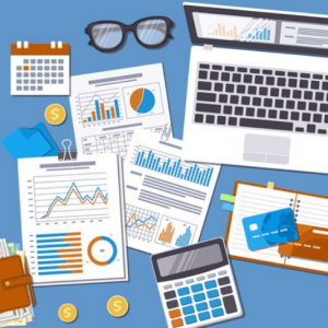 Accounting Industry in BiH: Stable yet Unexploited